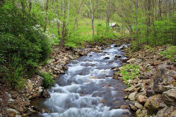 Photograph - Country Creek by Jill Lang