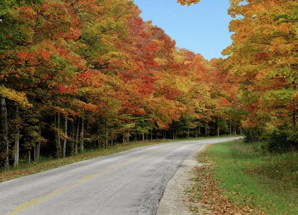 Wall Art - Photograph - Country Drive by Chris Fleming
