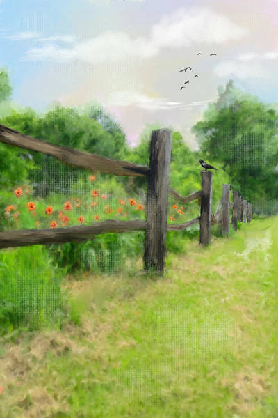 Wild Poppies Digital Art - Country Drive by Mary Timman