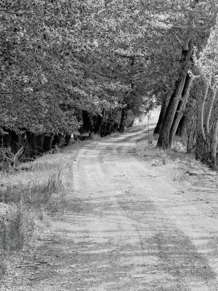 Photograph - Country Lane Bw by David King