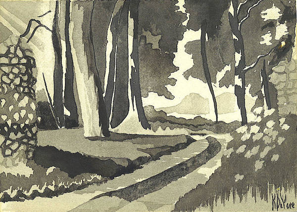 India Ink Wall Art - Painting - Country Lane In Evening Shadow by Kip DeVore