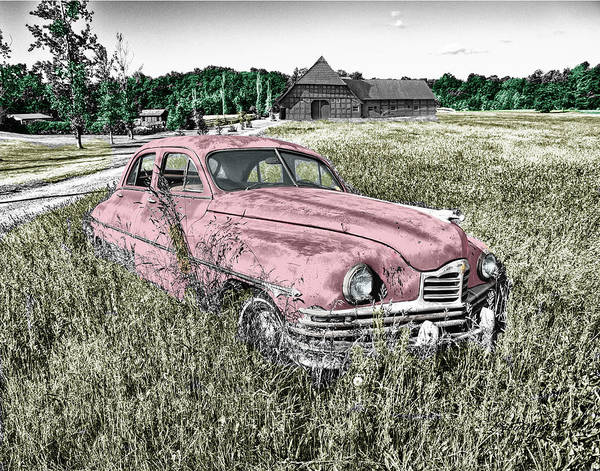 Photograph - Country Life by Ericamaxine Price