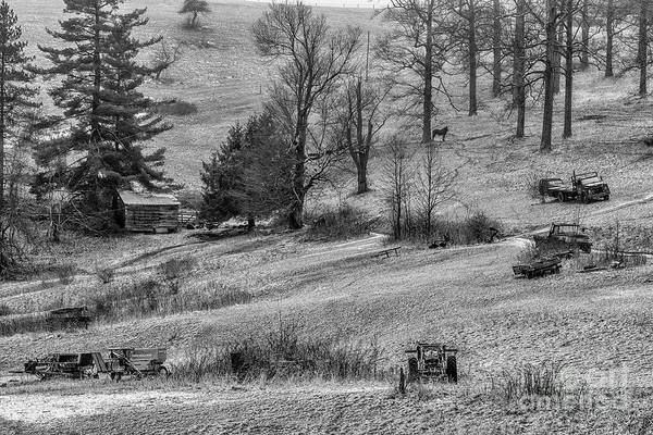 Photograph - Country Life In Black And White by Thomas R Fletcher