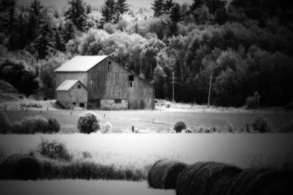 Photograph - Country Living  by Cathy Beharriell