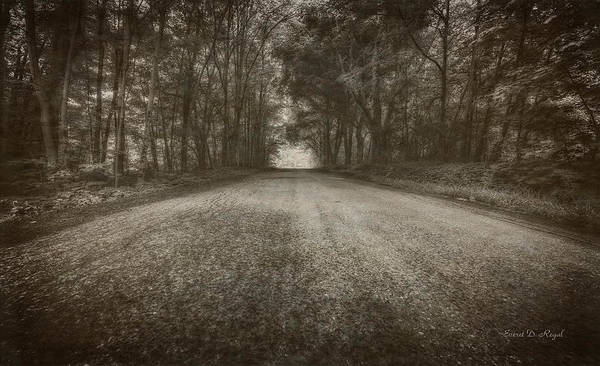 Country Road Photograph - Country Road by Everet Regal