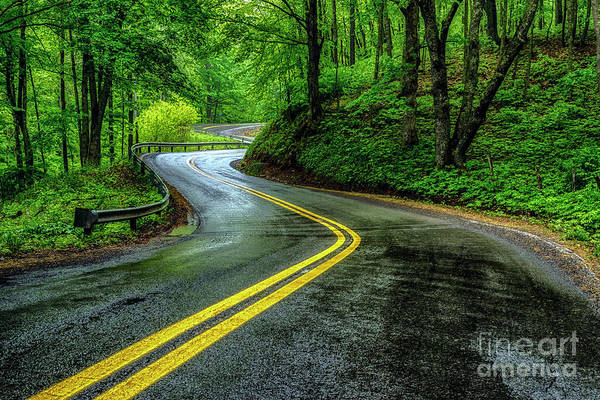 Photograph - Country Road In Spring Rain by Thomas R Fletcher