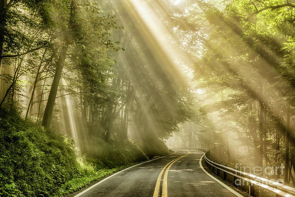Photograph - Country Road Rays Of Light by Thomas R Fletcher