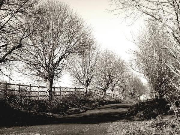 Photograph - Country Road by Roberto Alamino
