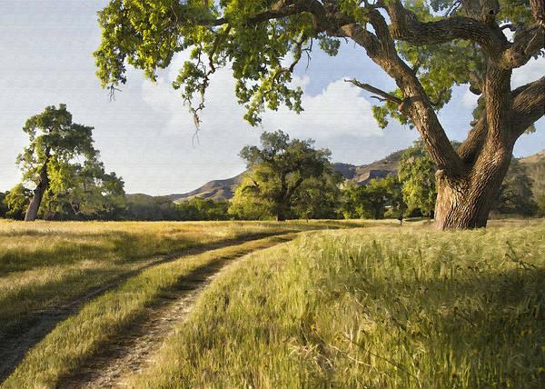 California Oak Digital Art - Country Road by Sharon Foster