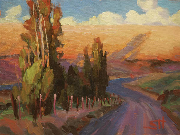 Poplar Painting - Country Road by Steve Henderson