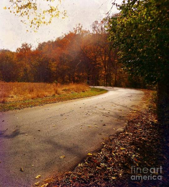 Photograph - Country Road Take Me Home by David Neace