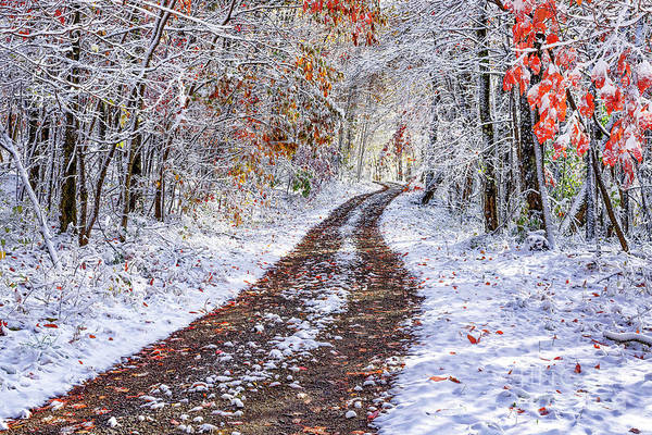 Photograph - Country Road With Autumn Snow  by Thomas R Fletcher