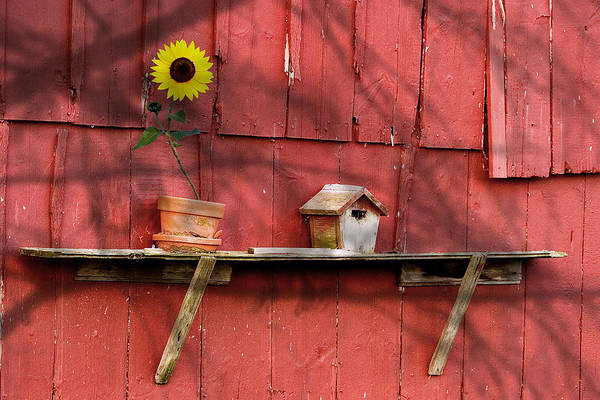 Shelves Photograph - Country Still Life II by Tom Mc Nemar