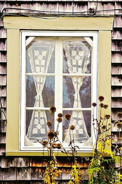Photograph - Country Window Lace And Thistles by Tatiana Travelways