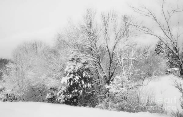 Rockbridge County Photograph - Country Winter by Kathy Jennings