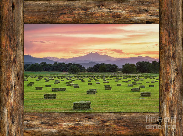 Photograph -  County Barn Wood Window View by James BO Insogna