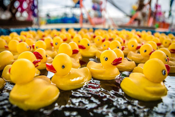 Ducks Photograph - County Fair Rubber Duckies by Todd Klassy