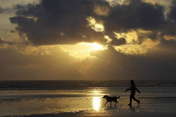 Oceanfront Photograph - County Meath, Ireland Girl Walking Dog by Peter McCabe