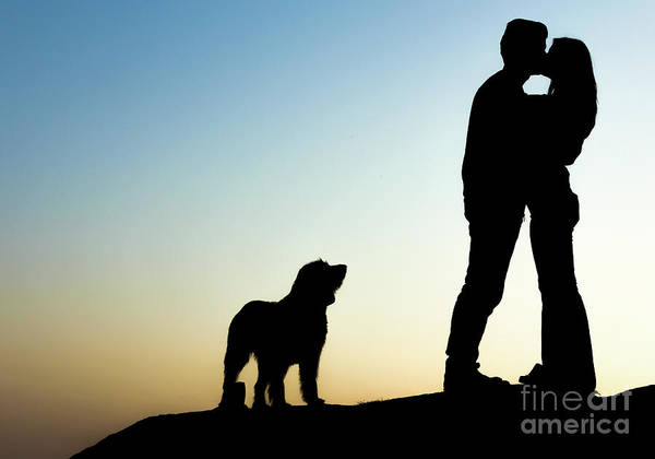 Photograph - Couple In Love Silhouette With Dog by Alexandre Rotenberg