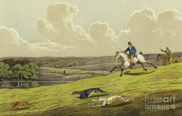 Wall Art - Painting - Coursing by Henry Thomas Alken