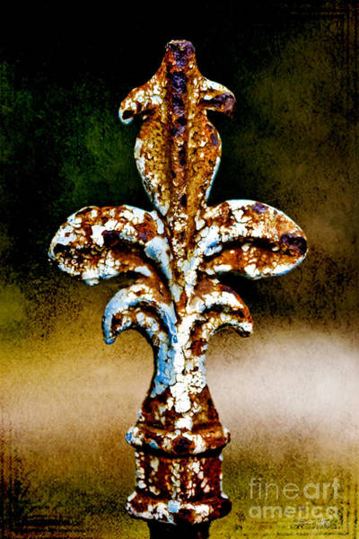Wrought Iron Photograph - Court Jester by Scott Pellegrin