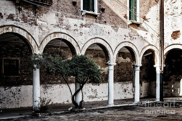 Photograph - Courtyard by Ana Mireles