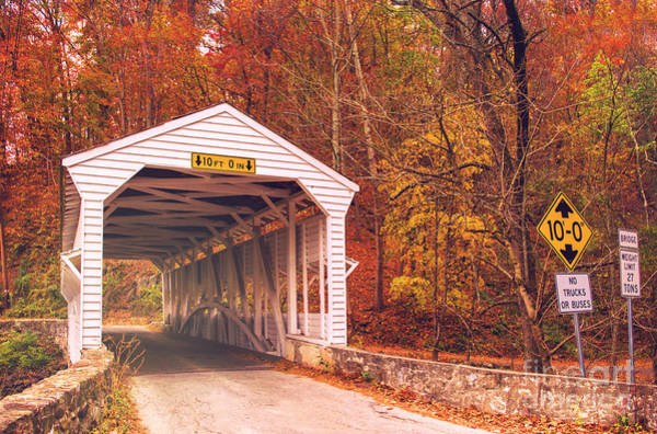 Photograph - Covered Bridge At Valley Forge by Rima Biswas