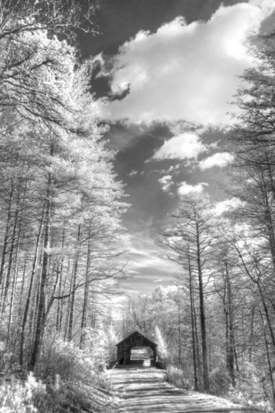 Wall Art - Photograph - Covered Bridge Dupont North Carolina by Jane Linders
