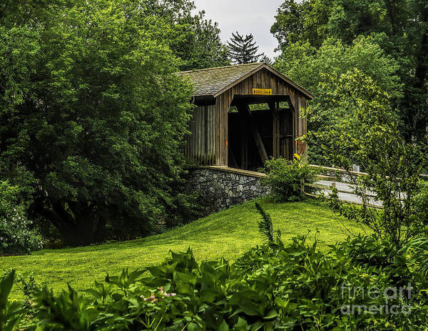 Photograph - Covered Bridge In The Woods by Nick Zelinsky