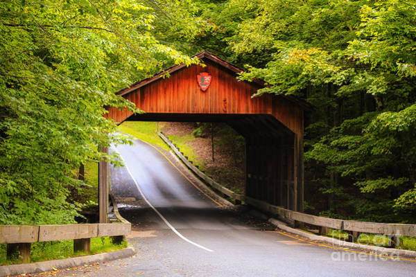 Photograph - Covered Bridge On Pierce Stocking by Rachel Cohen