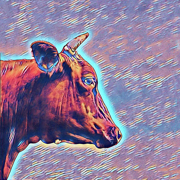 Mixed Media - Cow Contemplation by Susan Maxwell Schmidt