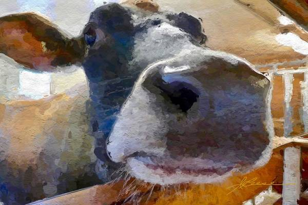 Painting - Cow Face Close Up by Joan Reese