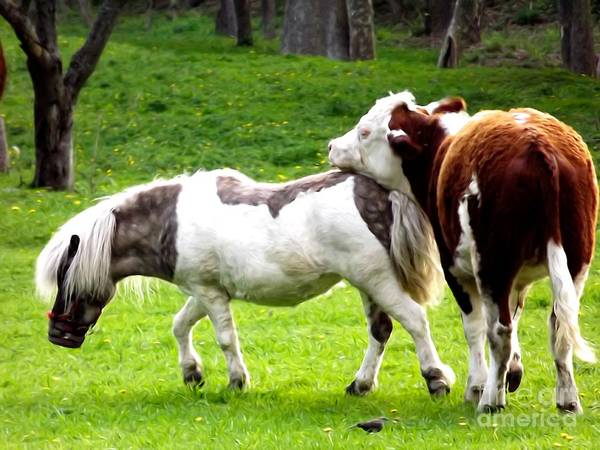 Photograph - Cow Horsie Soft Effect by Rose Santuci-Sofranko