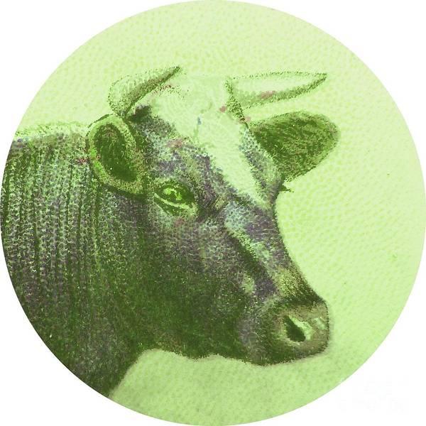 Farms Digital Art - Cow II by Desiree Warren
