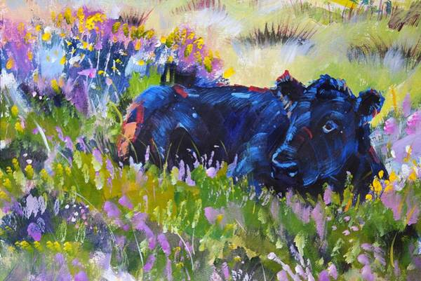 Painting - Cow Lying Down In Heather by Mike Jory