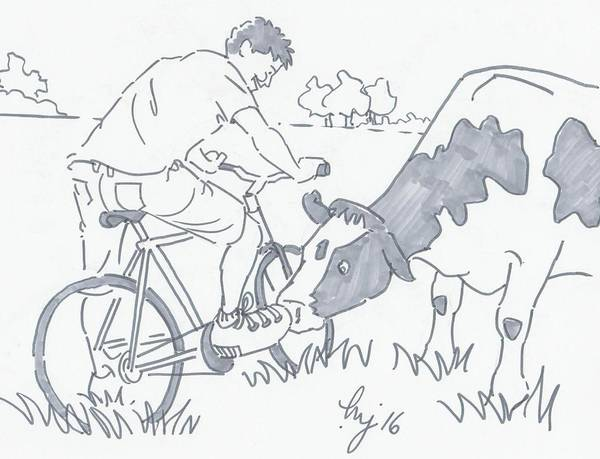 Friesian Drawing - Cow Sniffing A Cyclist Shoe Cartoon by Mike Jory