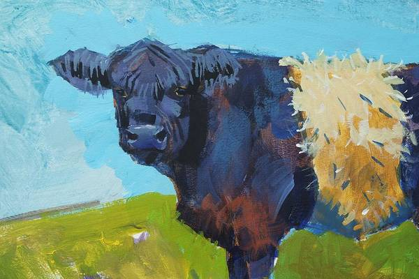 Painting - Cow With White Stripe - Belted Galloway Cow by Mike Jory