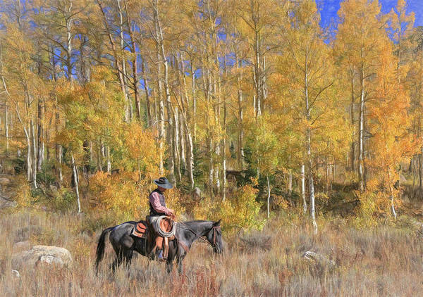 Wall Art - Photograph - Cowboy At Work by Donna Kennedy