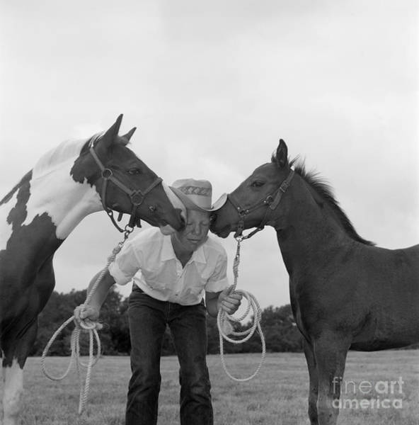 Photograph - Cowboy Between Two Horses, C.1960s by B. Taylor/ClassicStock