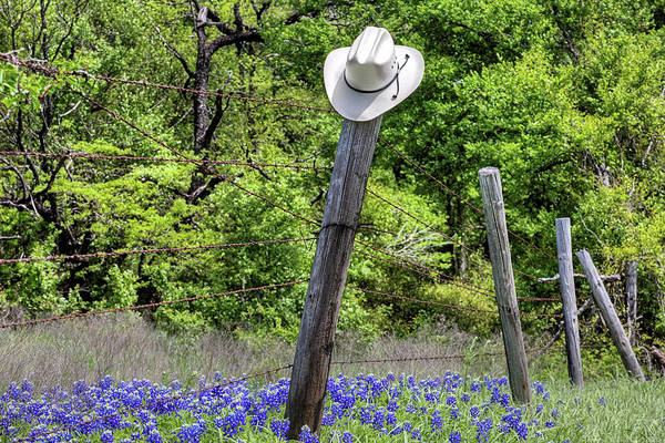 Photograph - Cowboy Hats And Bluebonnets by JC Findley