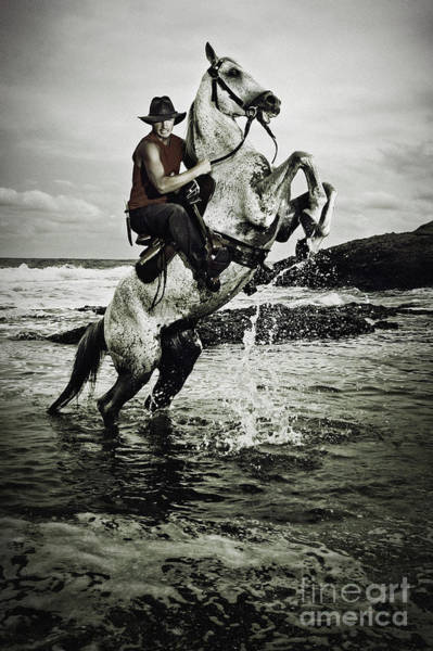 Photograph - Cowboy On The Rear Up Horse In The River by Dimitar Hristov