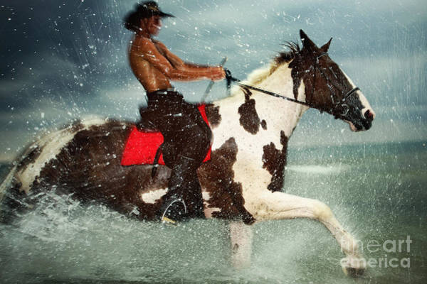 Photograph - Cowboy Riding Paint Horse In The Water by Dimitar Hristov