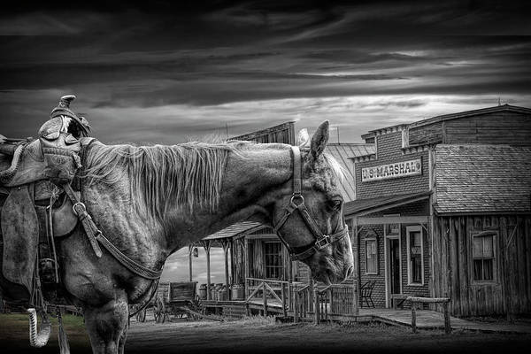 Photograph - Cowboy Saddle Horse In Black And White In Front Of The Marshall's Office by Randall Nyhof