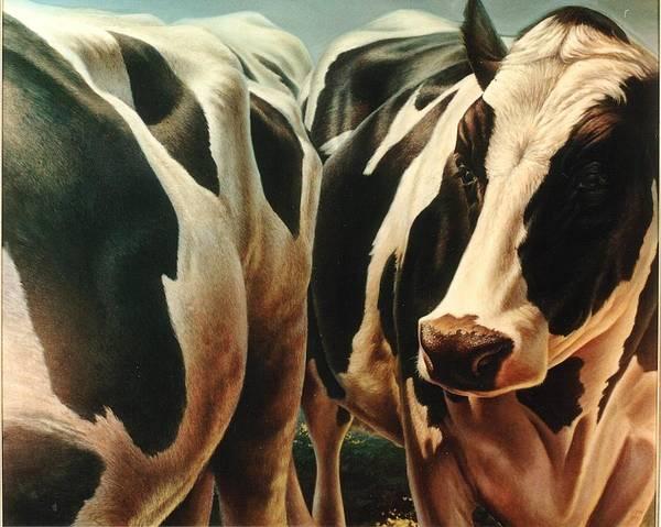 Hans Droog Wall Art - Painting - Cows 1 by Hans Droog