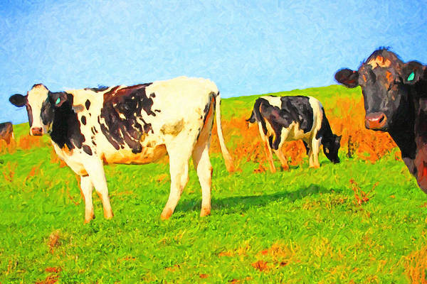 Photograph - Cows On A Hill 2 - Photoart by Wingsdomain Art and Photography