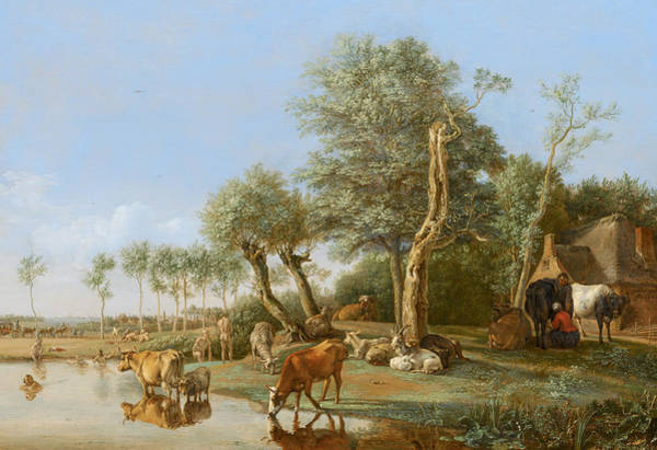 Water Fowl Painting - Cows Reflected In The Water by Paulus Potter