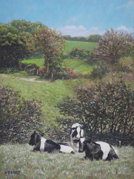 Painting - Cows Sitting By Hill Relaxing by Martin Davey