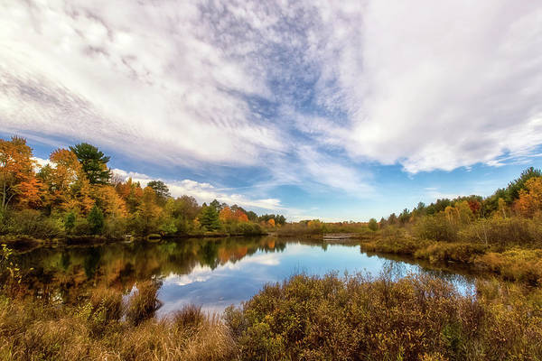Wall Art - Photograph - Cox Pond 1 by Heather Kenward