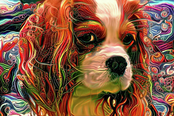 Mixed Media - Coy Cavalier King Charles Spaniel by Peggy Collins
