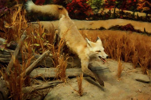 Digital Art - Coyote  by Chris Flees